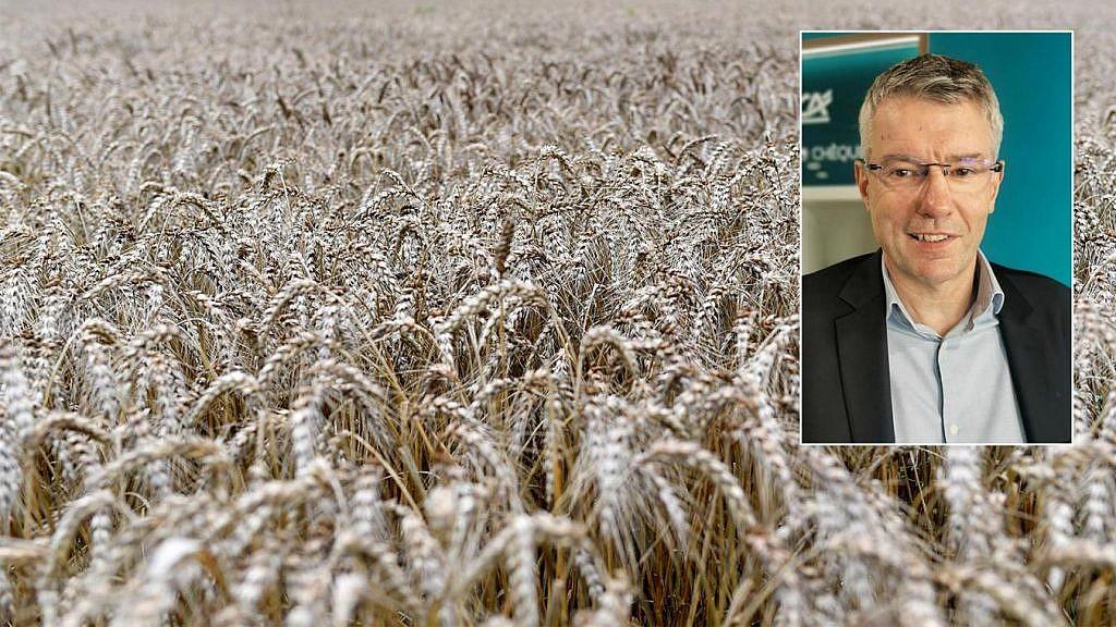 Entretien avec Stéphane Leduc, directeur de développement du marché de l'agriculture